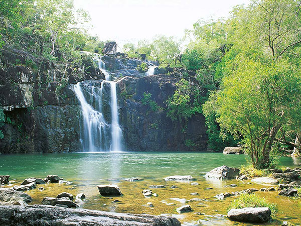 Cedar Creek Falls, in the Whitsundays Hinterland, is only a 30min drive from Mango House Resort
